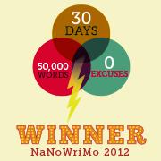 nanowrimo.org