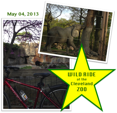 Wild Ride at the Cleveland Zoo